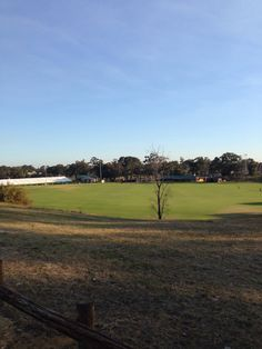a cricket field in Bayswater