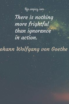 11 Best Goethe Quotes Images Goethe Quotes Quotes Words