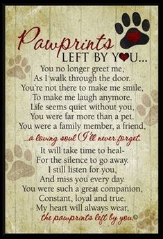 Beautiful words of sympathy for the loss of a dogs or cat. wall plaque featuring our Pawprints Left by You poem written by Teri Harrison. Our pet loss poem is the ideal gift for those coping with the loss of a pet. Pet Loss Quotes, Dog Death Quotes, Pet Quotes Dog, Quotes About Dogs Passing, Lost Dog Quotes, Dog Loss Poem, Quotes About Pets, Quotes For Dogs, Dogue De Bordeaux