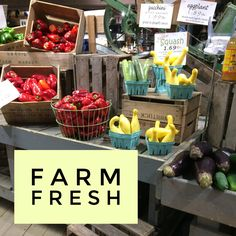Farm Stand Shopping: Healthy Fresh Foods Perfect for 21 Day Fix 21 Day Fix Menu, 21 Day Fix Plan, Cacciatore Recipes, Chicken Cacciatore, Clean Eating Dinner, Clean Eating Recipes, Healthy Recipes, Chicken Fennel, Crockpot Chicken Healthy