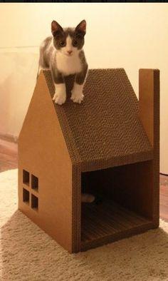 karton teveel na een verhuis hier heb je een leuk krabhuis voor de kat