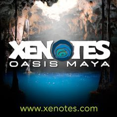 Xenotes Oasis Maya - closed Sunday, reservation required, picnic included
