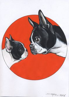 Boston Terrier looking at French Bulldog Puppy , sketchbook page by the Dog Painter / Jeroen Teunen