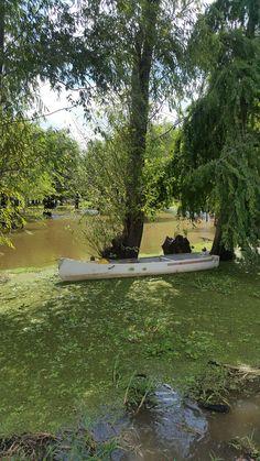 Englischer Garten on Munich Germay - English Garden Steam Boats, Forest Path, Traveling Europe, Natural Park, Tourist Places, Nature Reserve, Munich, Small Towns, Old Town