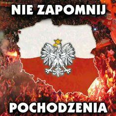 💝 Poland Hetalia, Poland Culture, My Roots, My Heritage, Warsaw, Eagles, Cool Stuff, Homeland, Tattoos