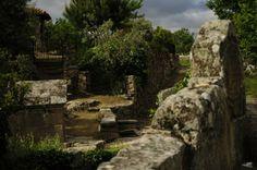 Paraje de la ermita de Santo Antonio.