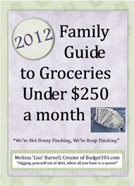 "2012 Family Guide to Groceries under 250. a month, ""We're not penny pinching, we're Benji Pinching!"""