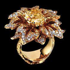 Narcissus Ring | 18K yellow gold, 1 yellow diamond 5,49 ct, 192 yellow diamonds 1,67 ct, 195 diamonds 1,08 ct | Jewellery Theatre