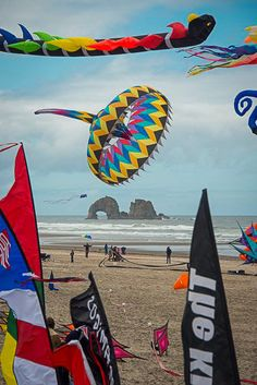 Kite Festival is high-flying fun! The Rockaway Beach Kite festival at the Ocean's Edge Wayside is sponsored by the American Kitefliers Association. It features professional and amateur kite fliers.