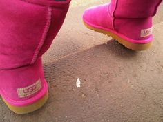 HOT PINK UGGS. I LOVE THESEEE