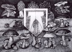 """Ron Laboray-""""Looking back at the first man on the Moon we consider all the edible mushrooms of North America and a US 20 dollar bill folded into the most recent conspiracy."""" Image 11.5""""x8.5"""" Acid free ink on 11x14"""" Bristol  paper. 2016"""