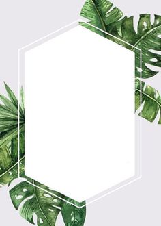 Frame for text or photo. Flower Backgrounds, Wallpaper Backgrounds, Iphone Wallpaper, Freetime Activities, Little Presents, Story Instagram, Instagram Highlight Icons, Pink Watercolor, Flower Frame