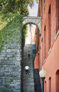 Runners going up The Exorcist Steps in Georgetown - Free outdoor activity and landmark in Washington, DC The Exorcist, Free Things To Do, Veterans Day, Outdoor Activities, Washington Dc, Runners, Places To Go, Spaces, Hallways