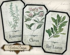 Shabby Chic Spice Labels Jar Labels Tags by VectoriaDesigns