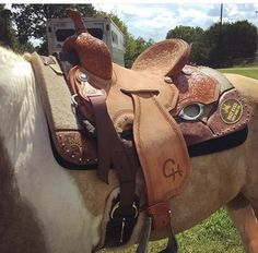 Corriente Saddle-another brand placement idea. Don't like the way fenders are hung