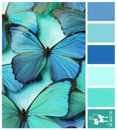 Classic Blue Butterfly - Blue, tiffany, turquoise, pastel , bright, Teal - Designcat Colour Inspiration Board