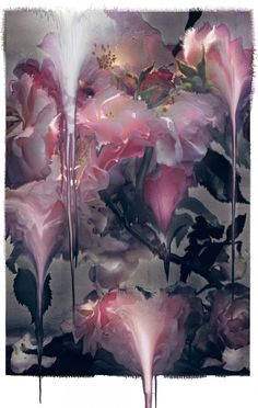 Still Life and Kate - Nick Knight: Image - SHOWstudio - The Home of fashion film and Live Fashion Broadcasting