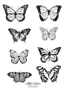 butterfly tattoo meaning \ butterfly tattoo & butterfly tattoo small & butterfly tattoo designs & butterfly tattoo meaning & butterfly tattoo sleeve & butterfly tattoo behind ear & butterfly tattoo arm & butterfly tattoo on shoulder Bad Tattoos, Mini Tattoos, Future Tattoos, Flower Tattoos, Small Tattoos, Sleeve Tattoos, Tatoos, Tattoo Floral, Flower Tattoo Drawings