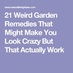 21 Weird Garden Remedies That Might Make You Look Crazy But That Actually Work