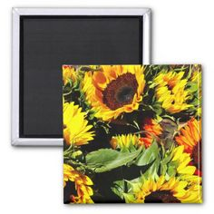 This is a picture of sunflowers waiting to be purchase at a farmers market. These orange and yellow sunflower will brighten up any room. Multiple sizes are available. Great for home or office decor. Also a great gift idea for holidays, birthdays, anniversary, and house warming.