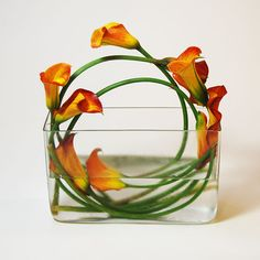 love Lilies and orchids - this site has some amazing arrangements!