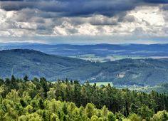 Rozhledna Veselý vrch ve městě Mokrsko, Středočeský