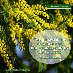 """#sweetdreams: """"We make a living by what we get, but we make a life by what we give."""" - Sir Winston Churchill  ~OaksSeniorLiving.com #quote #elderly #seniors #quotes #caring Senior Living, Winston Churchill, Sweet Dreams, Atlanta, Quotes, How To Make, Life, Quotations, Quote"""