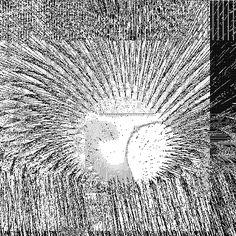 #gif #art #digital #mutations #michaelmanning #simonstage #collaboration #artists #email #image Michael Manning, Gif Art, Circles, Collaboration, Dandelion, Artists, Digital, Artwork, Image