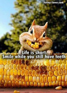Life is short. Smile while you still have teeth.
