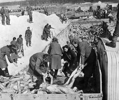 Women of the SS concentration camp of Bergen-Belsen unload the corpses of prisoners for burial in a mass grave. These works have attracted their allies liberated the camp. Around the moat - a convoy of British soldiers. Former guards as punishment is prohibited to use gloves to put them at risk of contracting typhoid.