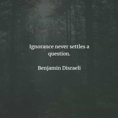 67 Ignorance quotes and sayings that will inspire you. Here are the best ignorance quotes to read from famous authors that will surely inspi. Feeling Stupid, How Are You Feeling, Ignorance Quotes, Being Ignored Quotes, Harlan Ellison, Michel De Montaigne, Disraeli, Noam Chomsky, Isaac Newton