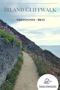 Irland: Entdecke den wunderschönen Wanderweg Cliffwalk von Greystones nach Bray oder andersherum.