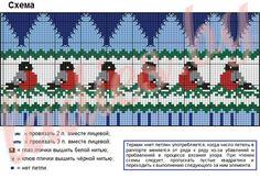 Схема вязания шапочки со снегирями