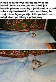 Dzieciństwo - Ministerstwo śmiesznych obrazków - KWEJK.pl Polish Memes, Komodo Dragon, Where The Heart Is, Poland, Haha, Humor, Funny, Cute, Animals