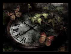 Le temps qui passe - Time goes by