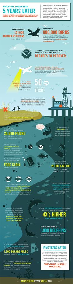Gulf Oil Disaster: 5 Years Later Infographic #makeBPpay