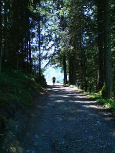 Allgäu #Allgäu #Alpsee #Urlaub #Camping