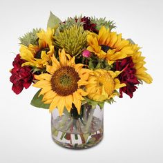 Sunflower and Dahlia Bouquet in a Glass Vase