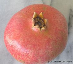 Pomegranate: One big pomegranate from the Farmers' Market this morning. Photo © 2012 Ann M. Del Tredici
