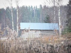 An old shed. @kuulas_valo on Instagram