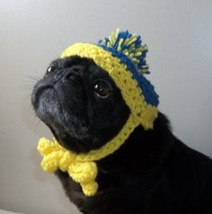 Pet Hat Dog Accessory Pet Clothing Cat Hat by PamperedPetsPlace, $13.50