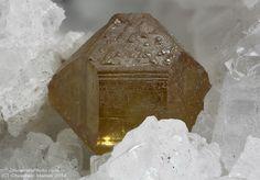 Sphalerite Lengenbach Quarry, Imfeld (Im Feld; Feld; Fäld), Binn Valley, Wallis (Valais), Switzerland 2.07 mm yellow - orange Sphalerite crystal. Collection & Photo Matteo Chinellato