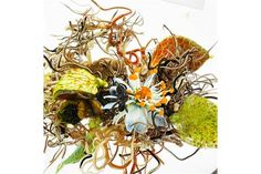 PAUL STANKARD (b. 1943) Lampworked glass paperweight with flower, ant, berries, and root people,