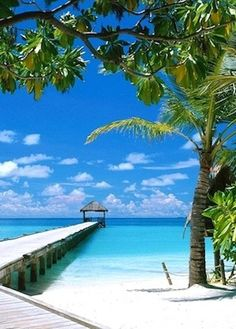 Tropical island. |Re-pinned by www.borabound.com I would want to go to island I never heard of before.