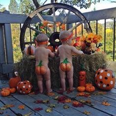 "No ""butts"" about it… We have some AWESOME Halloween treats in our shop! Order one now so that your little pumpkins will have a spooktacular surprise delivered for Halloween! www.theboodlebox.com #halloween #trickortreat #october #boo #gifts"