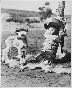 Navajo papoose on a cradleboard with a lamb approaching, Window Rock, Arizona. 1936, by H. Armstrong Roberts.
