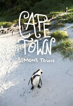 Simon's Town, South Africa #CapeTown #SouthAfrica #travel