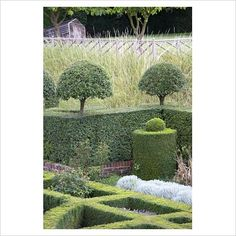 If you're a topiary lover, you're spoilt for choice when visiting the gardens at Hatfield House in Hertfordshire.  www.hatfield-house.co.uk
