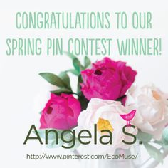 Congrats, Angela! We hope you enjoy the $500 Blick Art gift card. Thank you for participating in craftgawker's Spring Pin Contest!