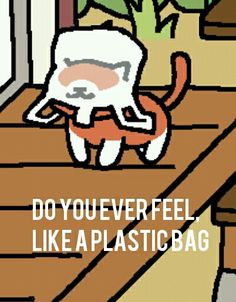 Yes this cat indeed feels like a plastic bag...